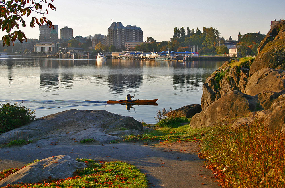 Inner harbour kayaker late day paddle on calm water, walking path in foreground